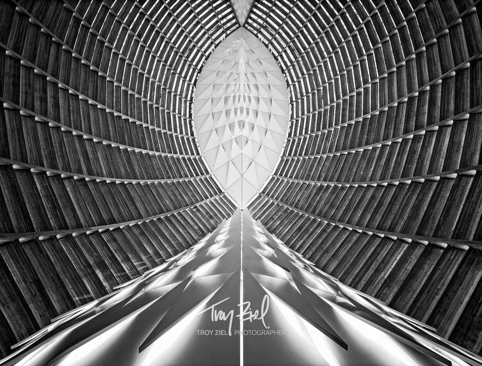 Genesis by Troy Ziel