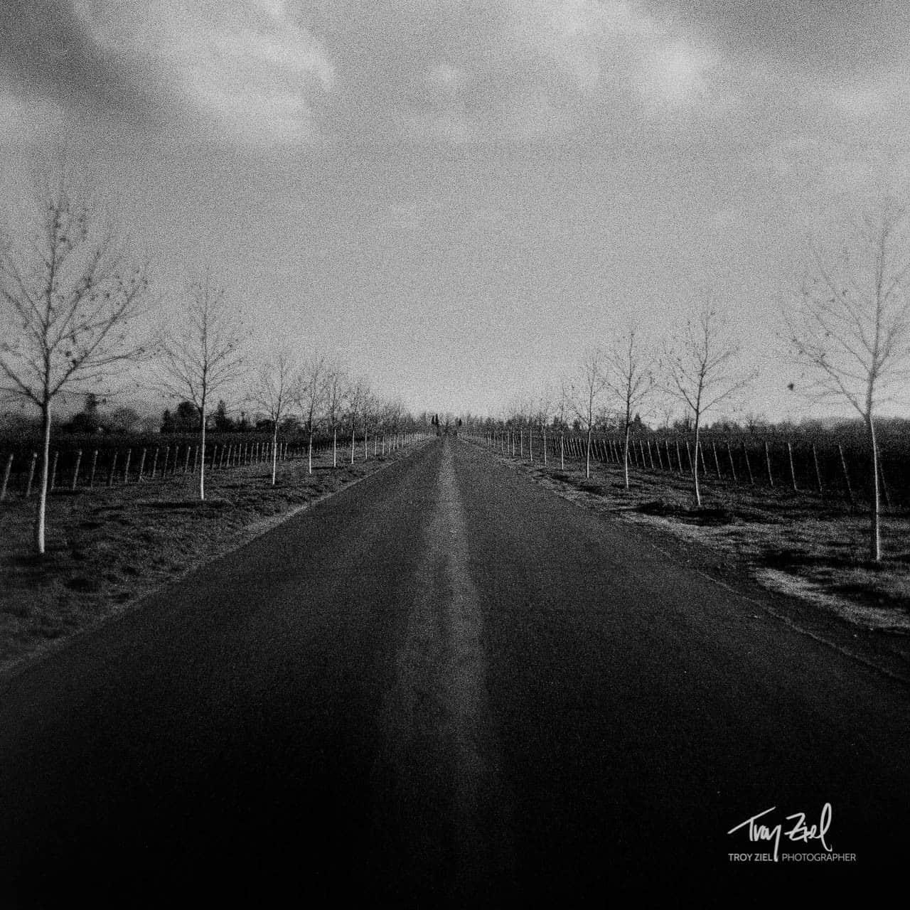 Grainy Road