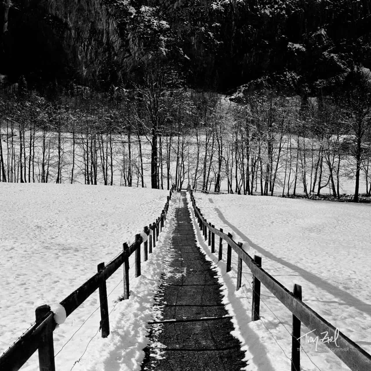 Switzerland Pathway